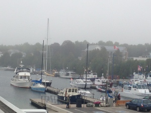 Visit Tobermory Harbour and its shops and restaurants